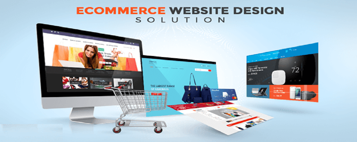 E-Commerce web designing course potential customer online store